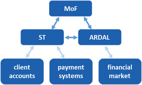 State Treasury System entities and their relationship in liquidity management of the State Treasury